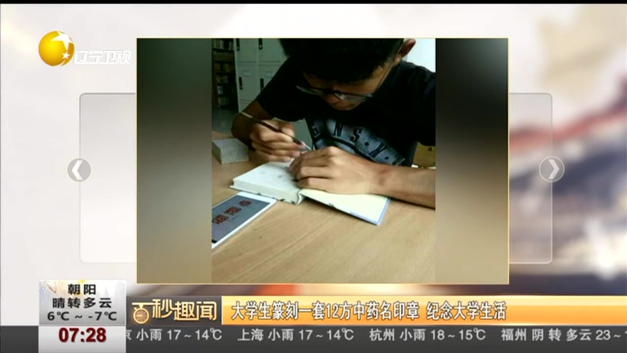 大学生篆刻一套12方中药名印章 纪念大学生活
