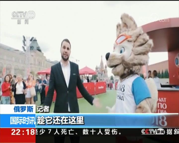 """世界杯 吉祥物""""扎比瓦卡""""知多少"""