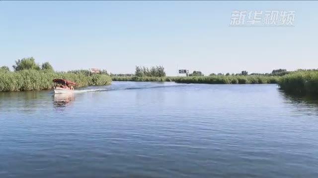 中外纪录片制作人和媒体代表探访河北雄安新区